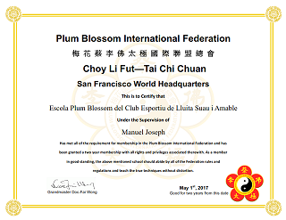 Plum Blossom International Federation